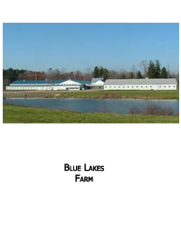 Blue Lakes Farm